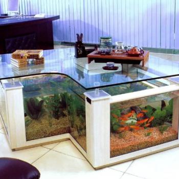 Есть ли смысл в полировке стекла аквариума?