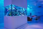 Как наличие аквариума влияет на давление