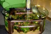 Клеим аквариумы