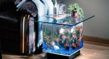Обновление стекла аквариума